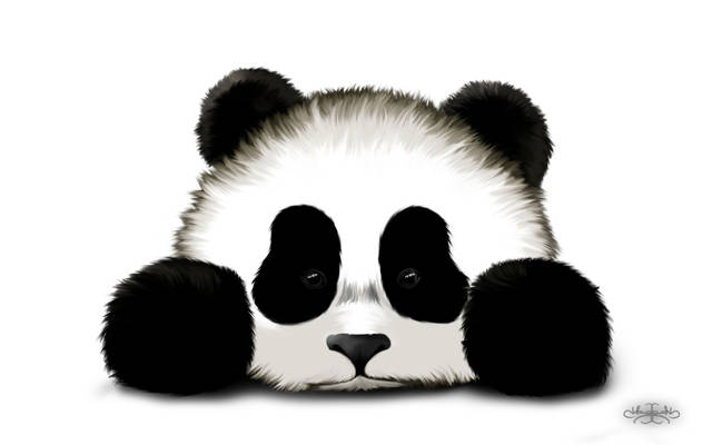 Sad Panda Wallpaper