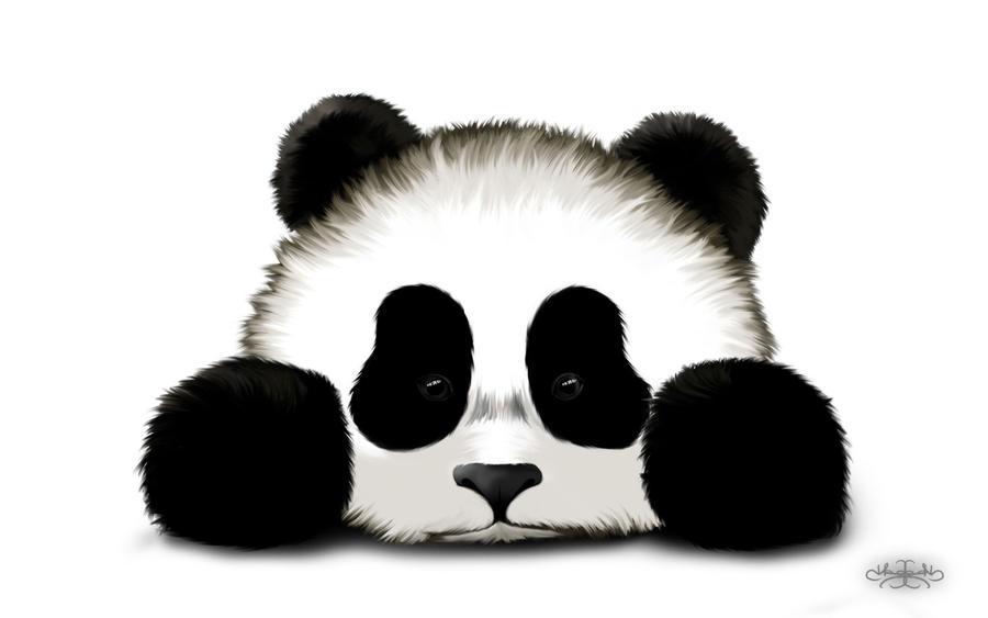 Cute Panda Drawing Wallpaper