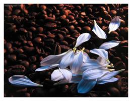 White coffee II by Emielcia