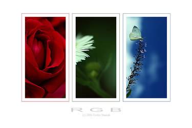 . R G B . by Emielcia