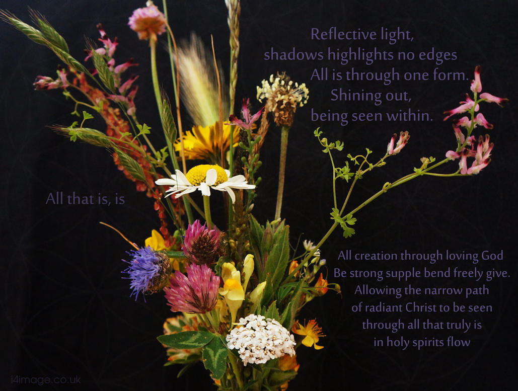 Flower-land-1-text by Ezeg