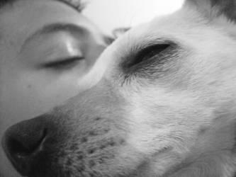 Sleepytime by pohsibetdrahs