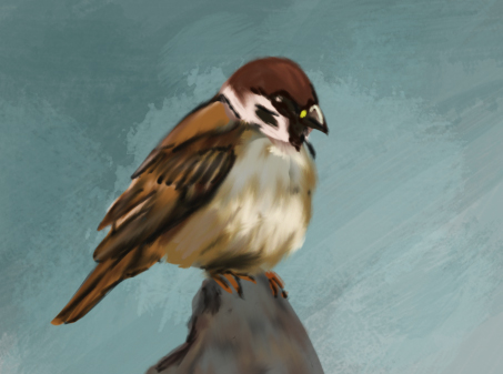 Sparrow by Che-Crawford