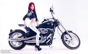 Harley Davidson - Hell yeah by JaninaN