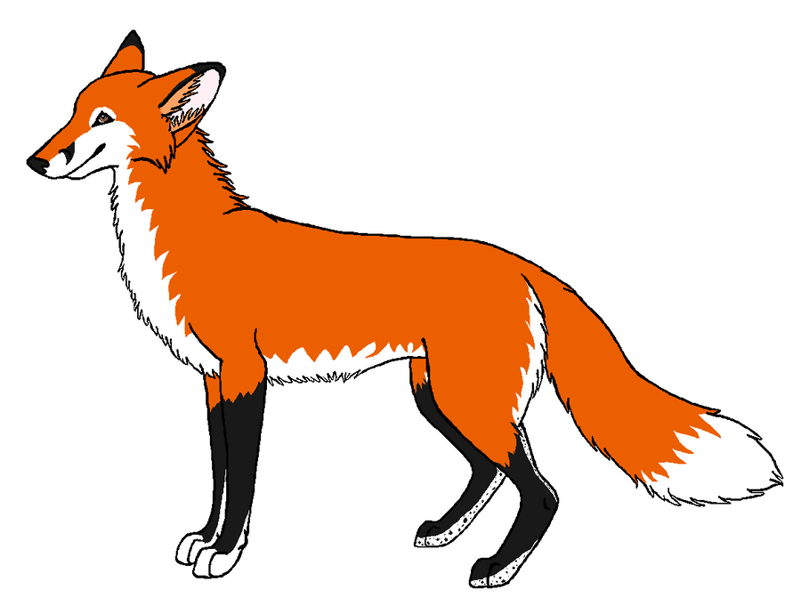 Red fox contest entry by wolfforce58 on deviantart for Red fox coloring page