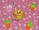 Sailor Moon - anime, Prism Power brooch - locket