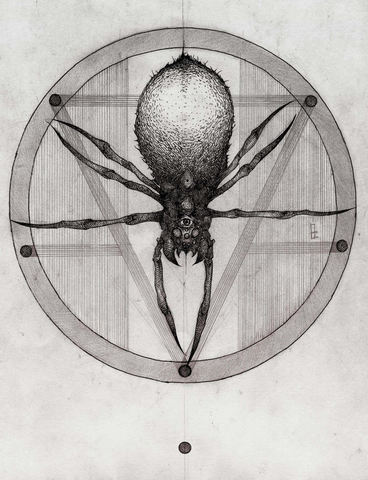 Spider by VladGradobyk