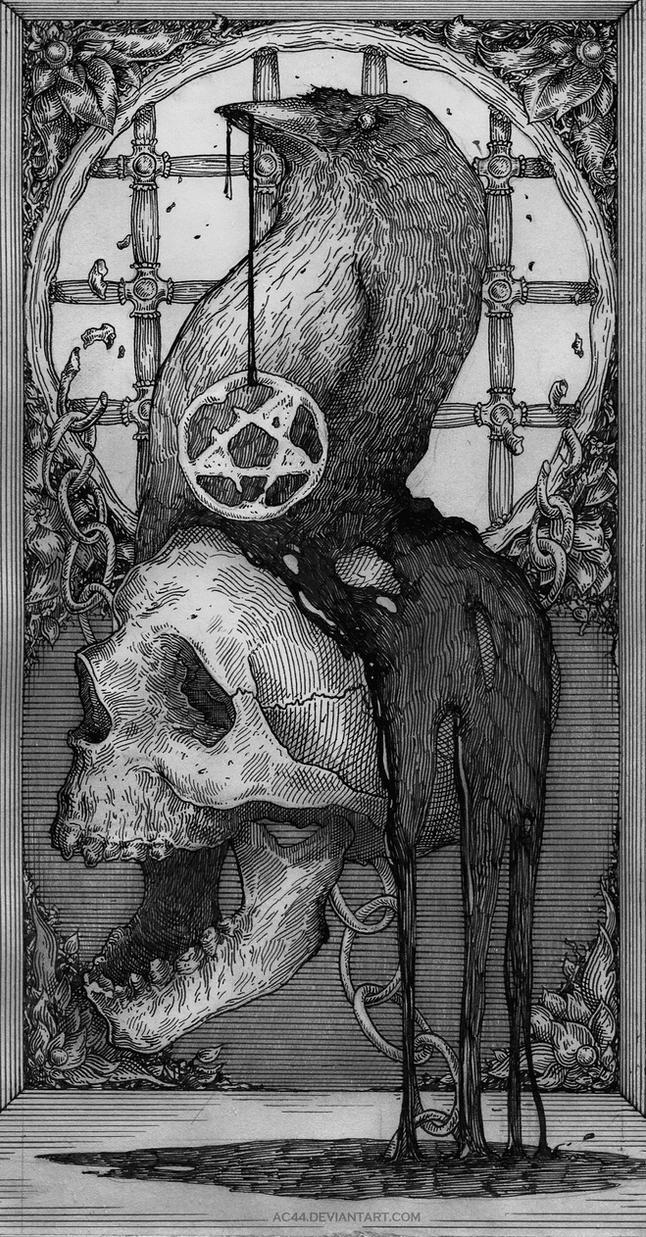 Skull by AC44
