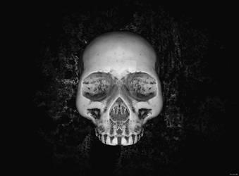 The third Skull