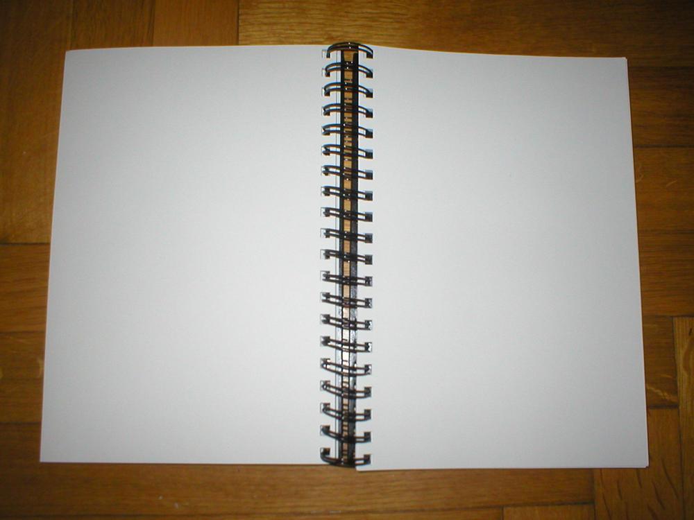 11 - Notebook by kitsune-oni-stocks
