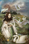 The Wild Swans by Ravven78