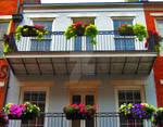 French Quarter House 1