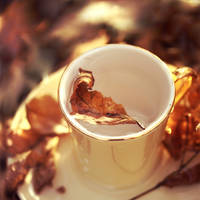Cup of Winter. by PiecesOfAnsley