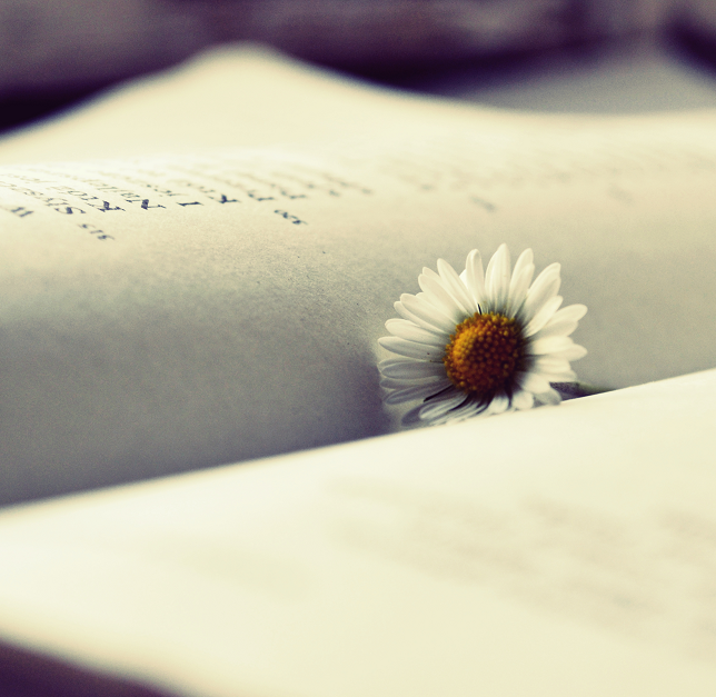 Reading... by MateuszPisarski