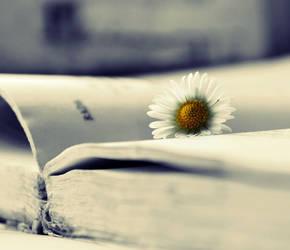 Reading part III by MateuszPisarski