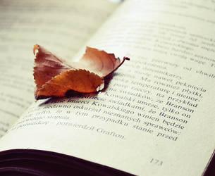 Autumn Time. by MateuszPisarski