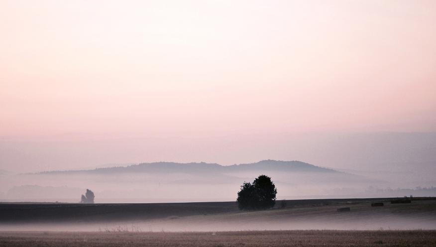 mist by MateuszPisarski