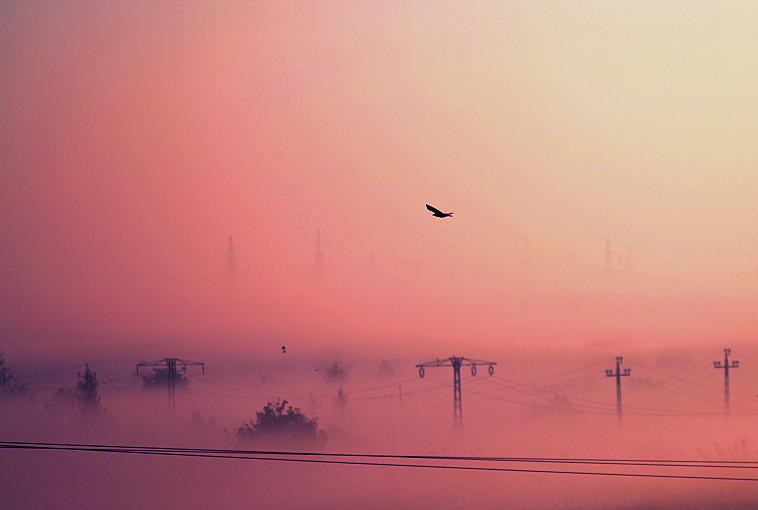 peaceful by MateuszPisarski