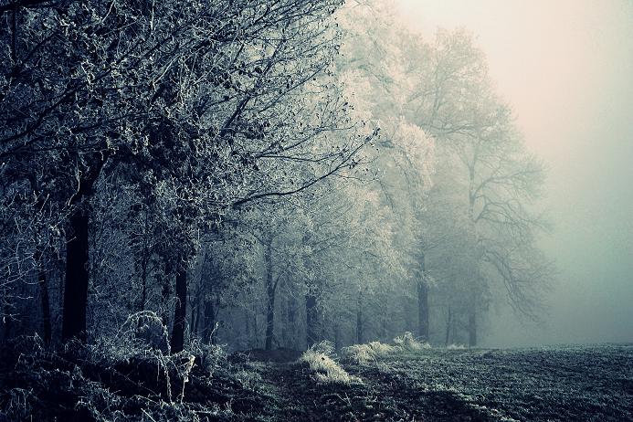 Frozen World by MateuszPisarski