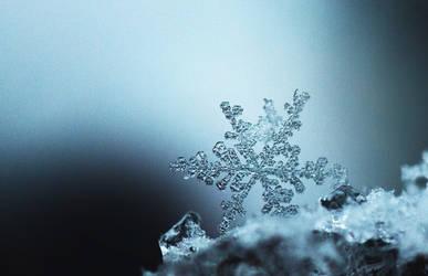 Frozen 2 by MateuszPisarski