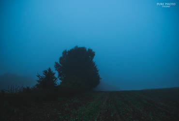 Silence. by MateuszPisarski