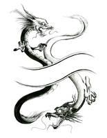 Yin-Yangish Dragons by LaurelSKY