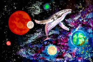 Swimming the Universe