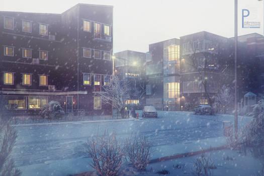 snowy street. began to snow