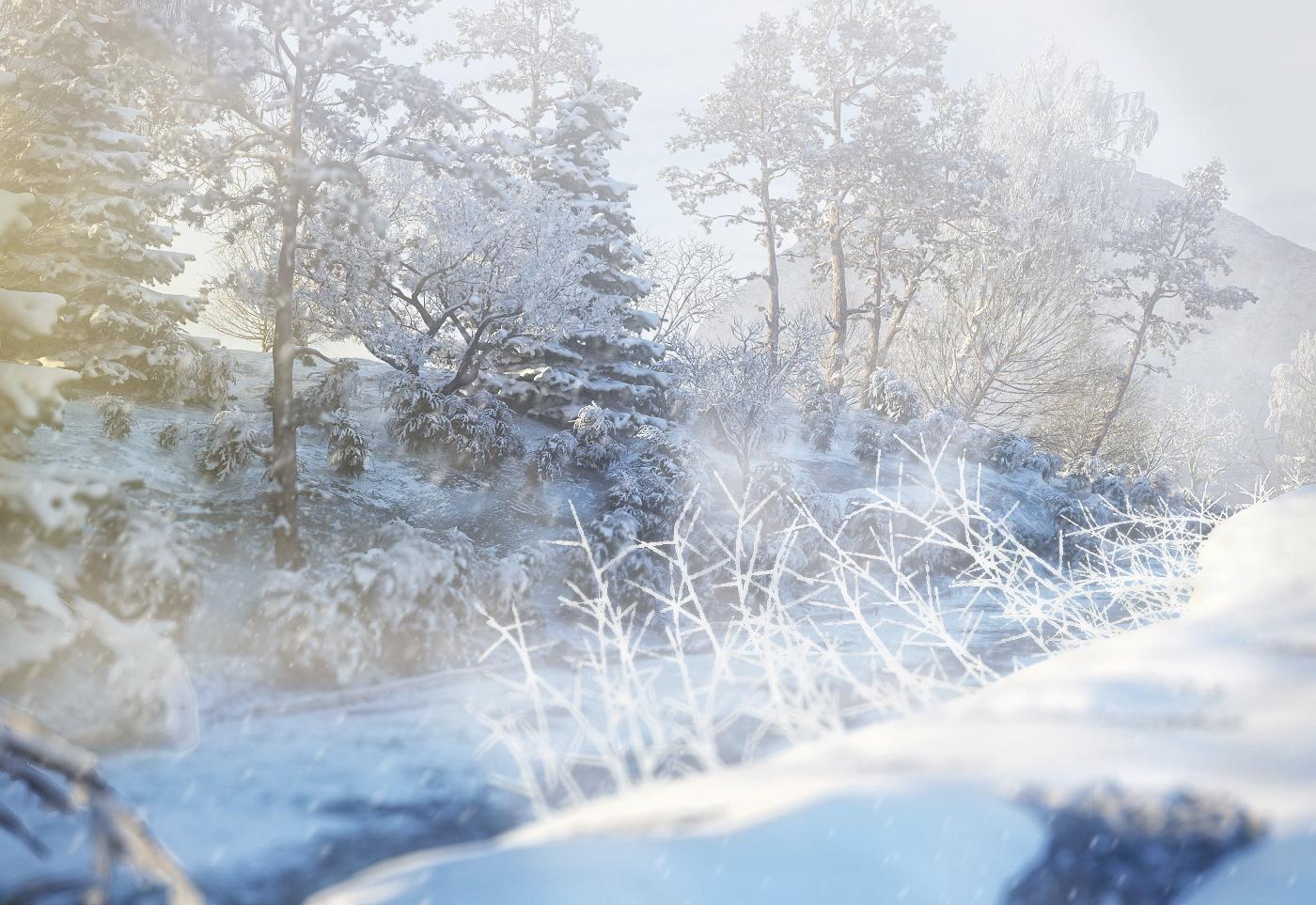 snowypath-02F