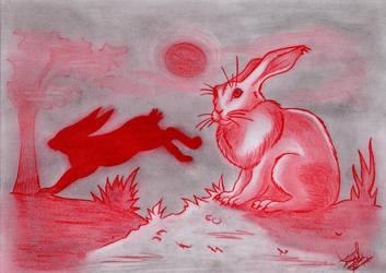 Rabbit by PrincessKairy