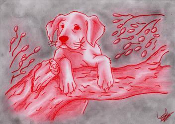 Doggy by PrincessKairy