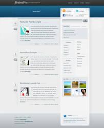 3BrainsPro Free WordPress by NEU7RAL