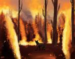 DotW - Burn
