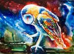 #1 Barn Owl