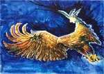 #4_Sea_Eagle