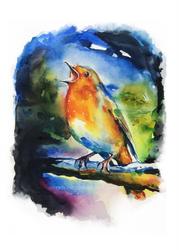 LittleBird#1