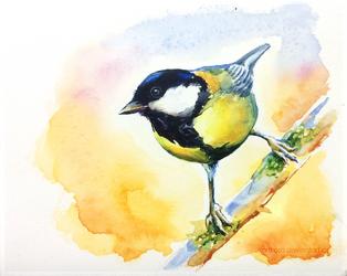 LittleBird#3