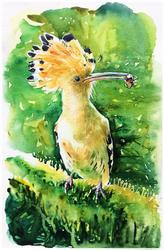 LittleBird#5