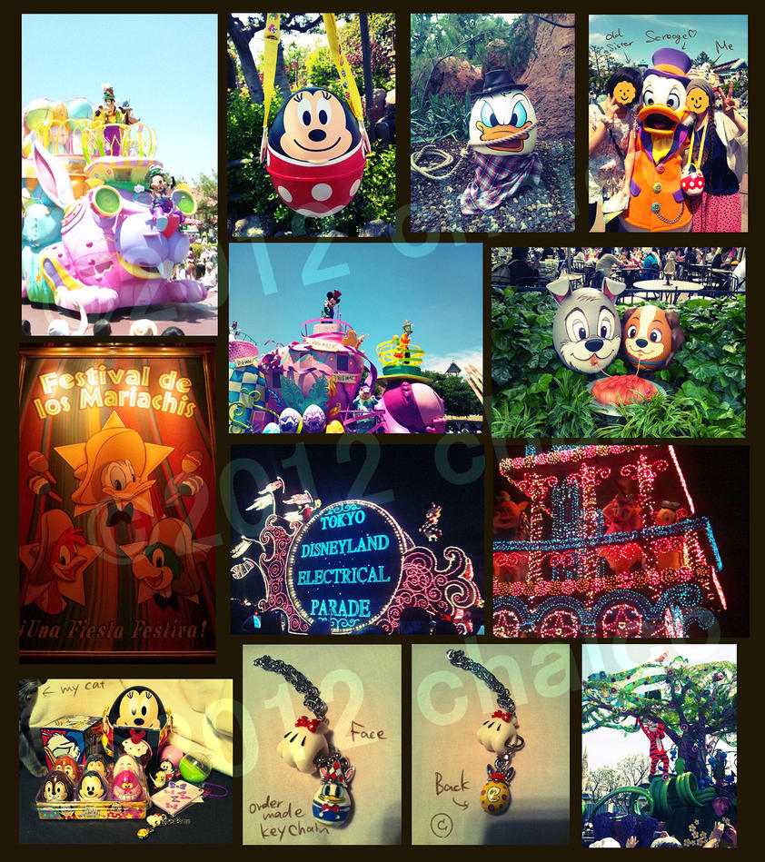 Tokyo Disney Land by chacckco
