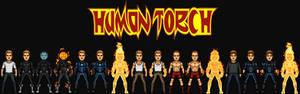 Johnny Storm/Human Torch II (The MCEU)