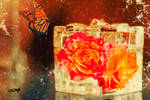 Roses in  a box 2