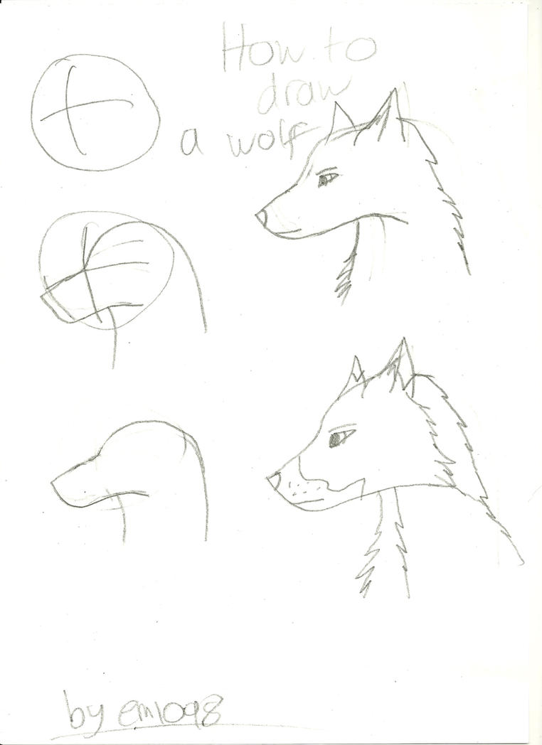 how to draw a wolf step by step pictures
