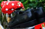 Shoe Concept II