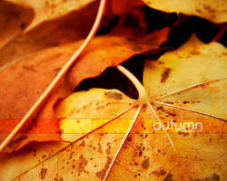 autumn by westart