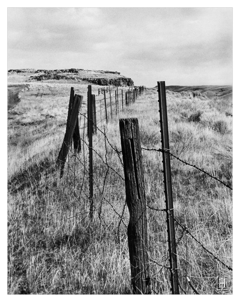 'Fenceline' by GoaliGrlTilDeath