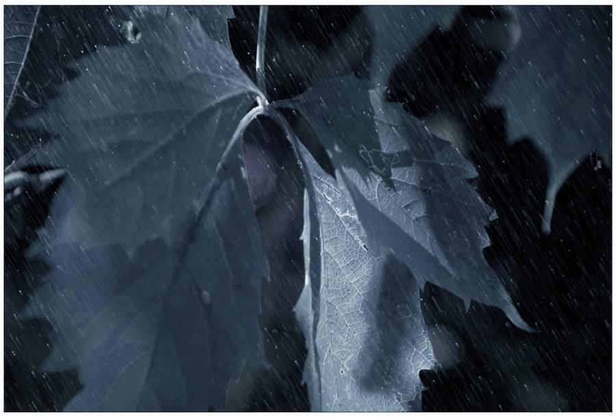 It's Coming- Night Rain by GoaliGrlTilDeath