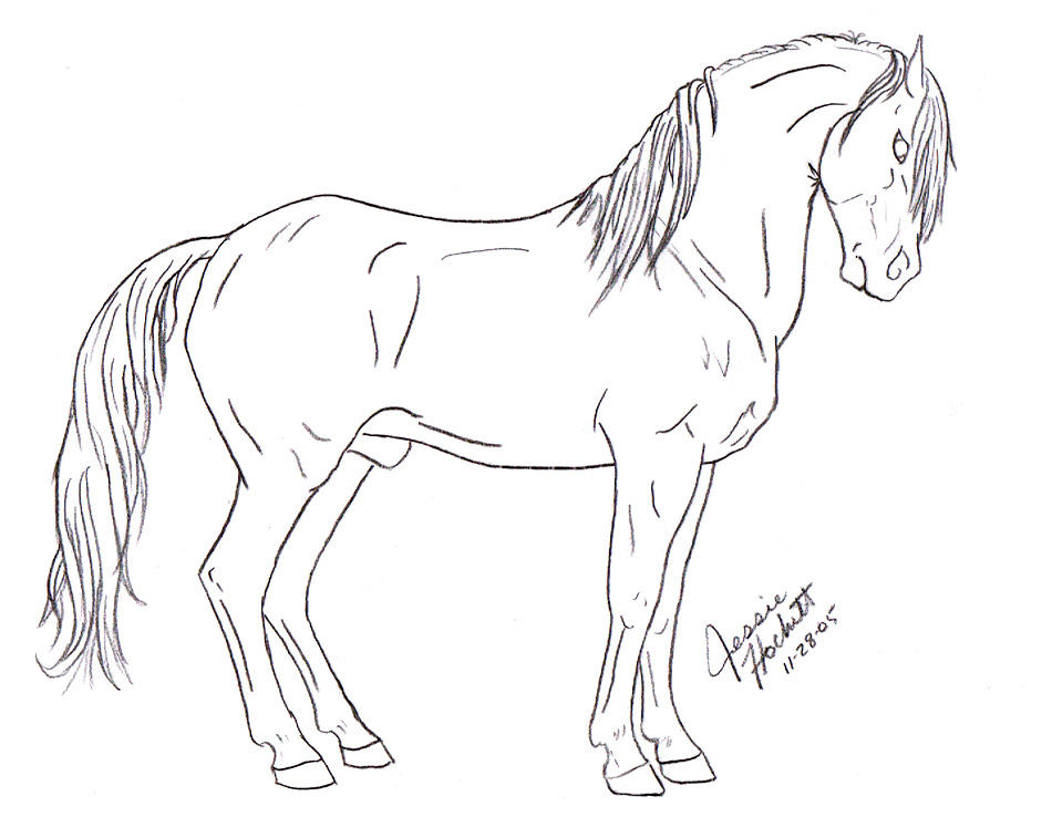Andalusian Lineart by ...