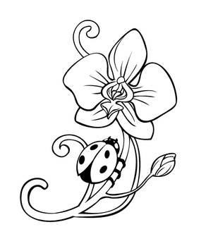 Orchid tattoo lineart
