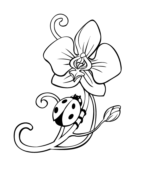 Orchid Flower Line Drawing : Orchid tattoo lineart by rpgirl on deviantart