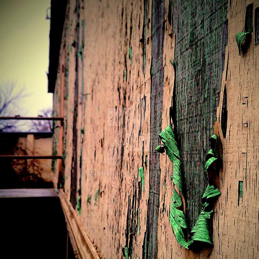 Greenback by dvdhrns